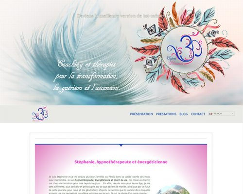 webmaster montpellier et réalisation de site internet montpellier, Aire Digitale